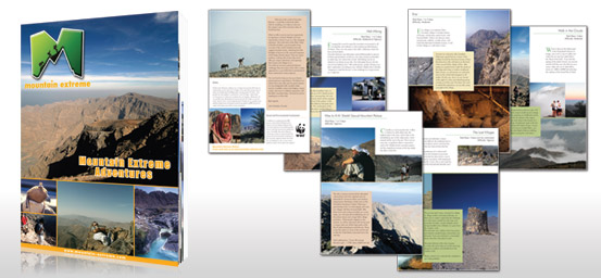 Brochure Design Sample 8